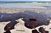 Oil Spill on Beach — Stock Photo