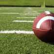 Closeup of American Football on Field - Stock Photo