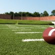 Closeup of American Football on Field — Stock Photo