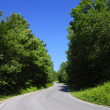 Stock Photo: Tarmac road through forest