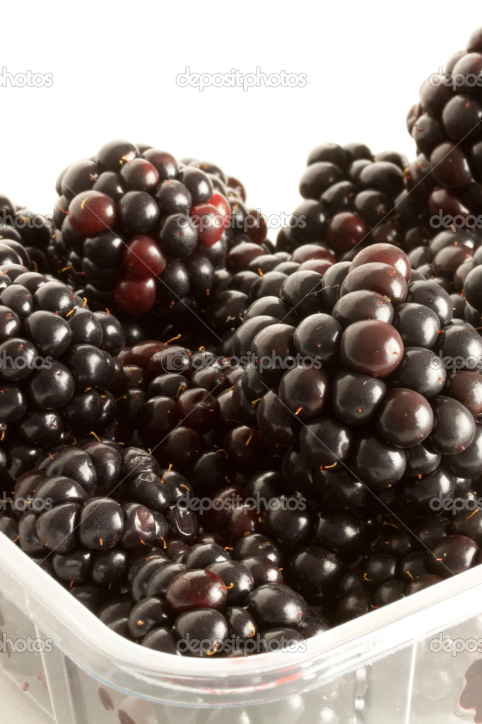Blackberries — Stock Photo #3544353