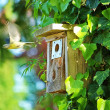 Birdhouse — Stockfoto #3252372