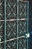 A Blue Iron Door — Stock Photo