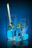Chemistry and life — Stock Photo