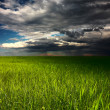 Storm over meadow - Stock Photo