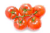 свежие красные помидоры на белом фоне — Стоковое фото