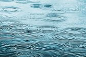 Raindrops on the water surface — Stock Photo