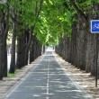 Stock Photo: A cycle lane