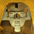 Ramses II head at Luxor Temple — Stock Photo
