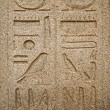 Hieroglyphics on a wall at Luxor Temple — Foto Stock