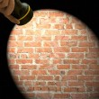Stock Photo: Spotlight frame on brick wall