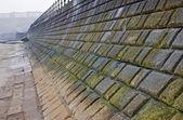 Sea wall defense on the beach — Stock Photo