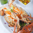Seafood meal of crab and lobster - ストック写真