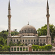 Stock Photo: Mosque by a river