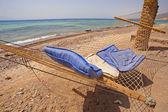 Hammock on a tropical beach — Foto de Stock