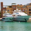 Luxury motor yachts in a marina — Stock Photo
