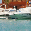 Stock Photo: Private motor boats moored in marina