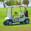 图库照片: Golf buggy on fairway