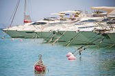 Private motor boats moored in a marina — Stock Photo
