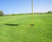 Closeup of a golf course green — Stock Photo