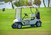 Golf buggy on a fairway — Stok fotoğraf