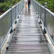 Couple cross-bridge - Stock fotografie