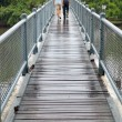 Couple cross-bridge - Stock Photo