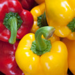 Red Yellow Green Bell Pepper - Stock Photo