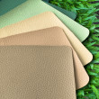 Earth Tone Leatherette color sample — Foto Stock