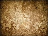 Old Wall Background — Stock Photo