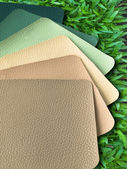 Earth Tone Leatherette color sample — Stock Photo