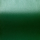 Green Leatherette Background — Stock Photo