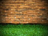 Brick Wall and Green Grass — Stock Photo