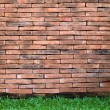 Brick Wall and Green Grass - Stock Photo