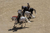 Three riders before bullfighting — Stock Photo