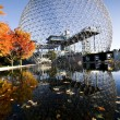 Stock Photo: Biosphere and maples