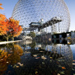Biosphere and maples — Stock Photo