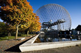 Biosphere basin and maples trees — Stock Photo