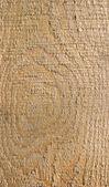 Необработанная древесина — Стоковое фото
