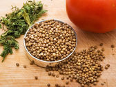 The seeds of coriander — Stock Photo