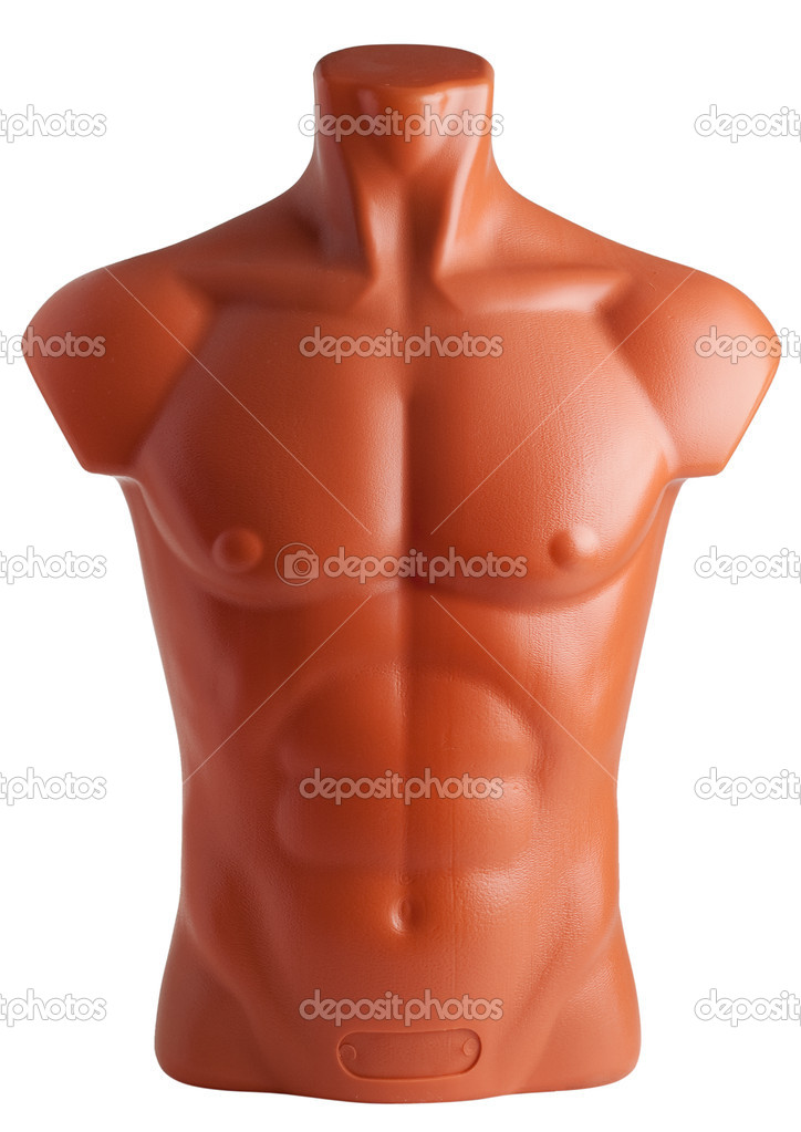 Male torso. Plastic mannequin isolated on white background.  Zdjcie stockowe #3203228