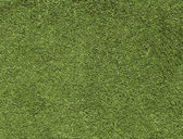 Texture of grass — Stockfoto