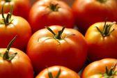 Bright red tomato — Stock Photo