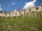 Sabbionara castillo — Foto de Stock