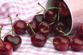 Cherries and Pink — Stock Photo