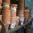 Stock Photo: Potting Shed