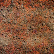 Stock Photo: Grungy surface