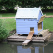 Duck House - Stock Photo