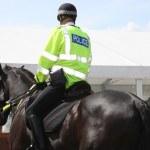 Police Horse — Stock Photo #3887234