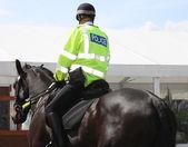 Police Horse — Stock Photo